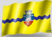 Steag Municipiu