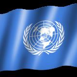 Steag Natiunile Unite
