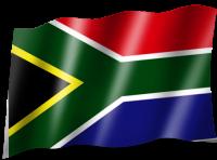 Steag Africa de Sud